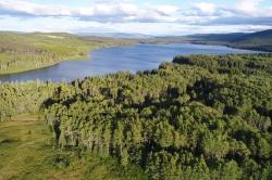 Day Lake Aerial