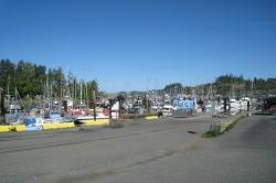 Port Hardy marina