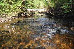 Fisherman River