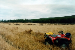 ATV at Sherringham Meadows