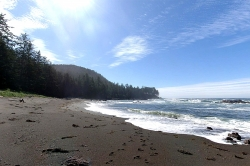 Beach on Cape Scott Provincial Park