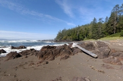 Beachfront, Cape Scott Provincial Park, Vancouver Island