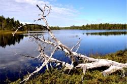 Chic Chic Lake