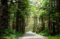 Naikoon Provincial Park, Haida Gwaii