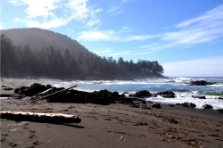 Sandy beach in Cape Scott Provincial Park, Vancouver Island