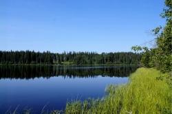 Tsichgass Lake, Omineca Region