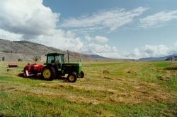 Ranch Life at Walachin
