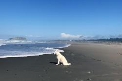 Duke Beach