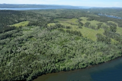 Tchesinkut_crown land_1