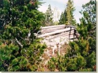 The abandoned cabin